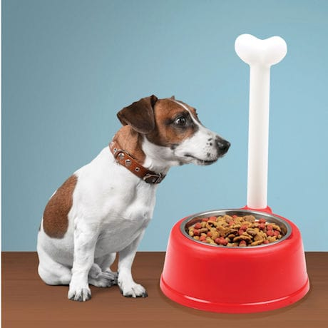 Pet Bowl with Bone Handle