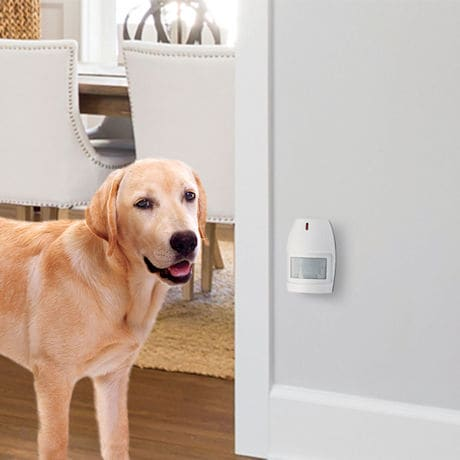 Wireless Watchdog Personal Security Monitor