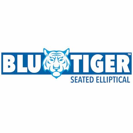 BluTiger™ Elliptical Exerciser