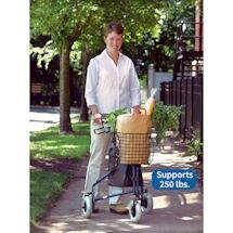 Deluxe 3-Wheel Rollator Walker with Basket & Pouch