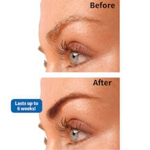 Instant Eyebrow Tint Kit
