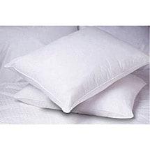 Allergy-Free Pillow