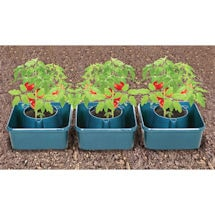 Set of 3 Tomato Grow Pots